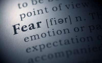 Harnessing Fear: From Failure to Success